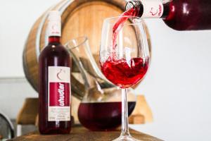 Vinothek-Uhudler-Wein